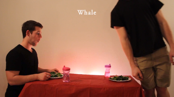 whale video how animals eat their food youtube funniest ever twitter